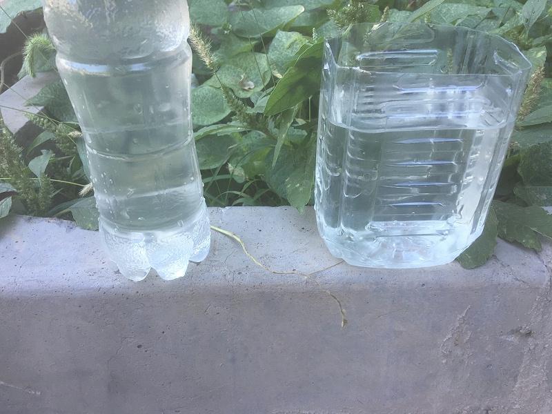 凯萨诺生活污水处理效果对比
