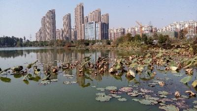 污水处理行业必须掌握的污水处理知识和技巧(一)